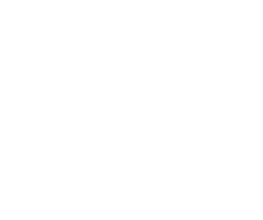 PolygonVisuals_StackedLogo_Orange