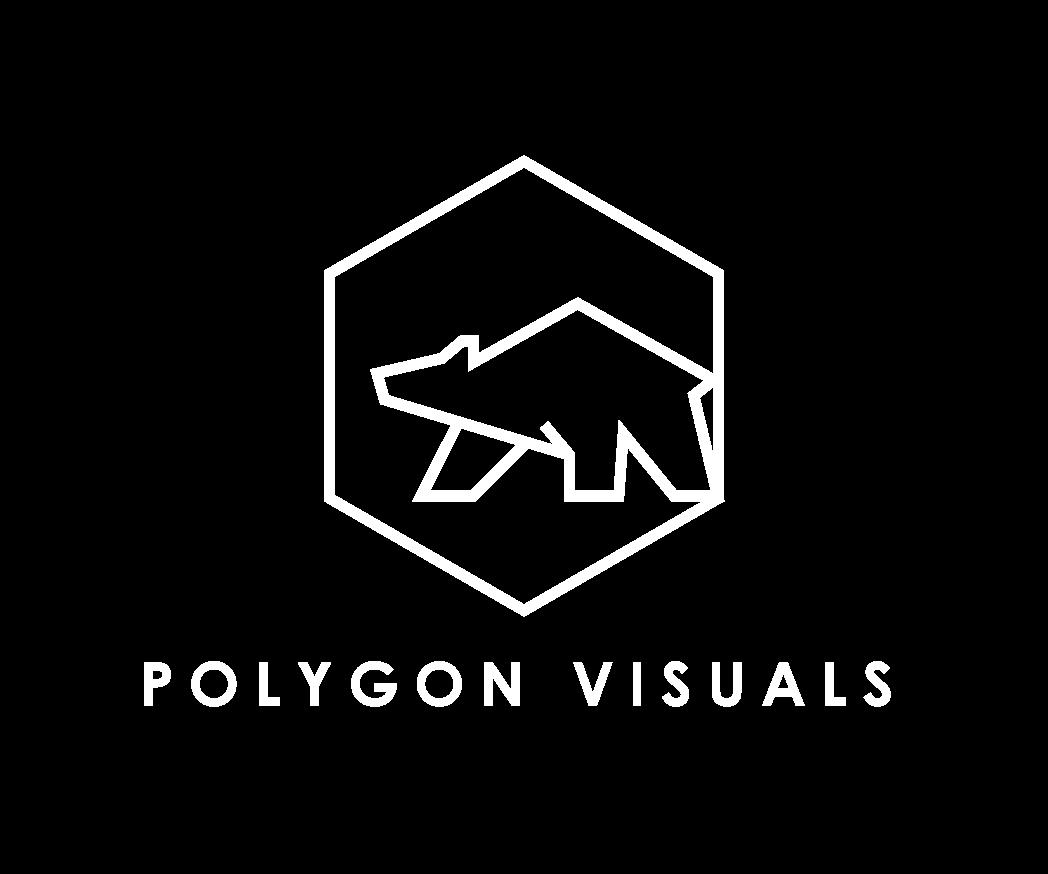 PolygonVisuals_StackedLogo_Orange
